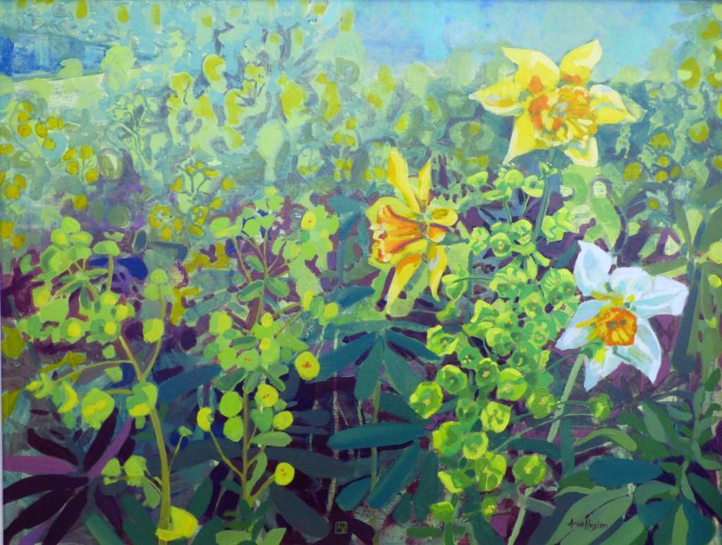 Daffodils and Euphorbia