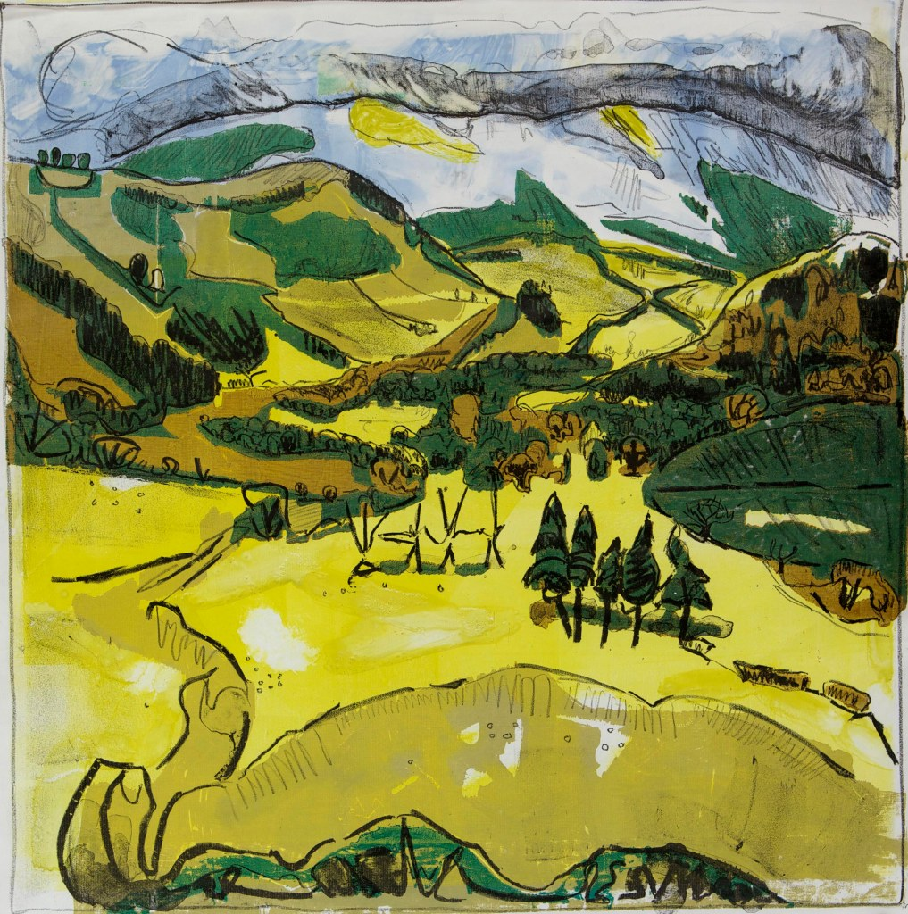 Rheidol Valley