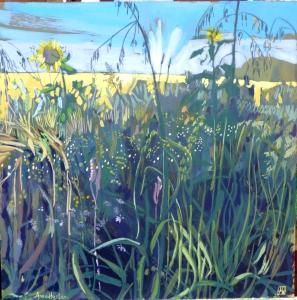 Sunflower Field Edge