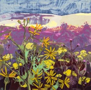 Wild Flower Meadow (1)