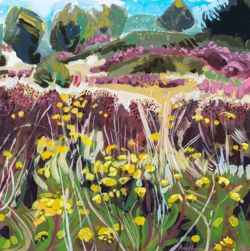 Wild Flower Meadow 3